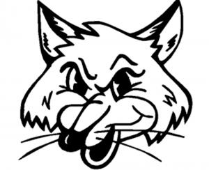 gustavus-logo